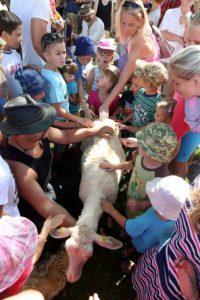 ovcacke-slavnosti-borovany-cb14pan-0347_galerie-980
